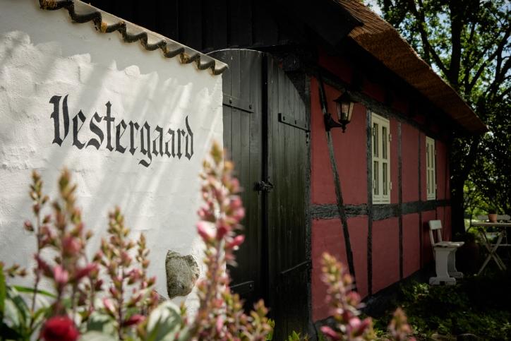 BB-Vestergaard _SG42713